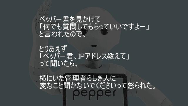 ペッパー君、IPアドレス教えて