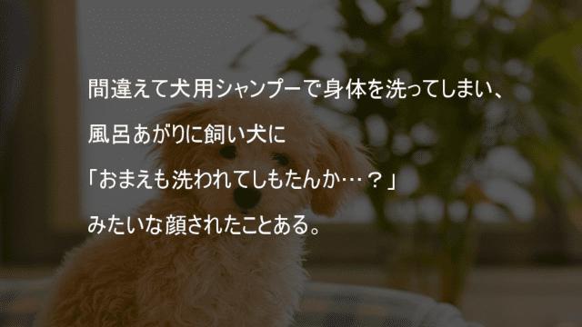 間違えて犬用シャンプーで身体を洗う
