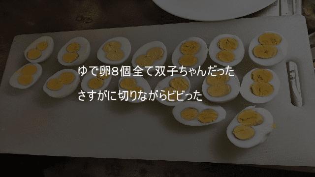 ゆで卵8個全て双子ちゃんだった