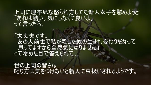 蚊の生まれ変わり