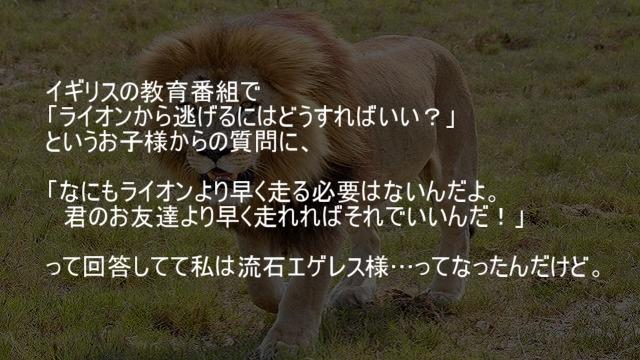 ライオンからの逃げ方