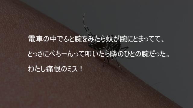 蚊を叩いたら人の腕