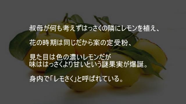 レモン はっさく