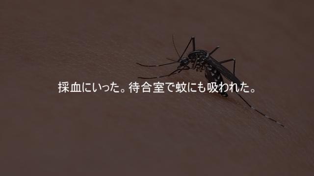 採血にいったら待合室で蚊にも吸われた。