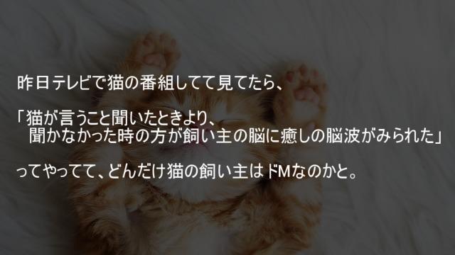 猫が言うこと聞いたときより聞かなかった時の方が飼い主の脳に癒しの脳波がみられた