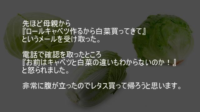 キャベツ レタス 白菜
