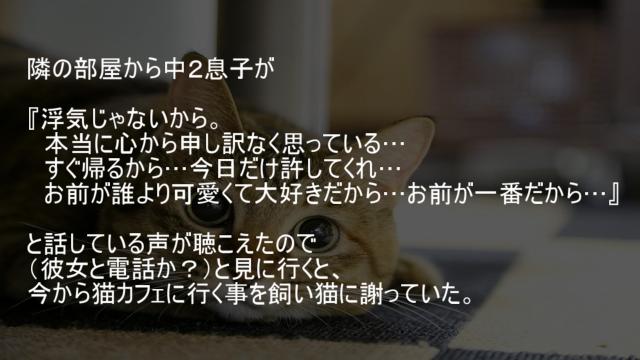 猫カフェに行く事を飼い猫に謝っている息子