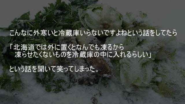 北海道では凍らせたくないものを冷蔵庫の中に入れる