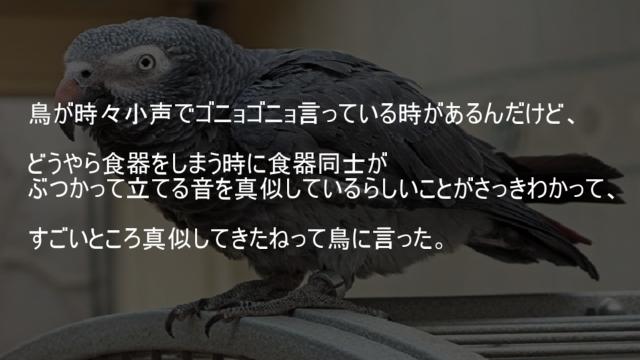 鳥が食器同士がぶつかって立てる音を真似している