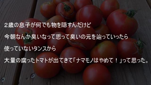 使っていないタンスから大量の腐ったトマト