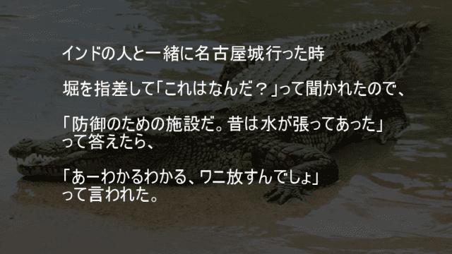 名古屋城の堀にワニ
