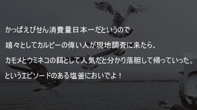 かっぱえびせん消費量日本一 現地調査したらカモメとウミネコの餌として人気