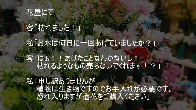花屋でなにも手入れをせずに枯れたと文句を言う客