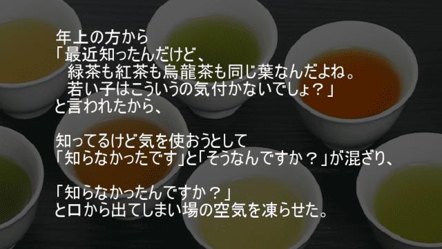 緑茶も紅茶も烏龍茶も同じ葉