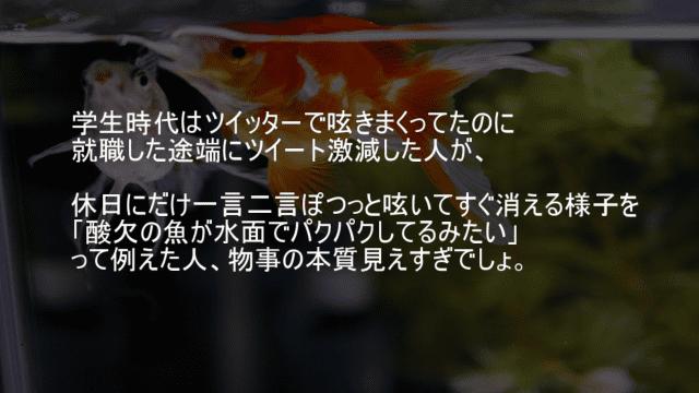 酸欠の魚が水面でパクパクしてるみたいなツイート頻度