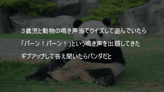 パンダの鳴き声はパーンパーン