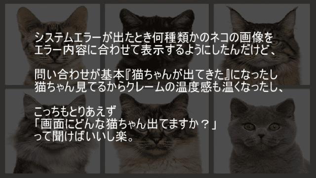 システムエラーが出たとき何種類かのネコの画像を表示
