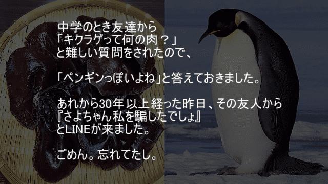 キクラゲはペンギンの肉
