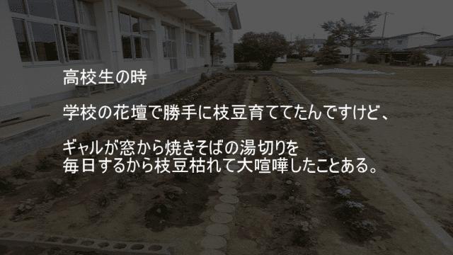 学校の花壇で育ててる枝豆をカップ焼きそばの湯切りで枯らされる